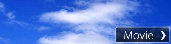 【癒し系作業用BGM】川のせせらぎと小鳥の鳴き声8時間版/Nature Sounds