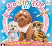 196_3DS おしゃれな仔犬3D