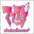 PS3 マブラヴ photonflowers*(フォトンフラワーズ)